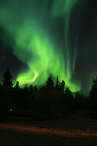 Northern lights that looks like intense green fire above a silhouette of trees