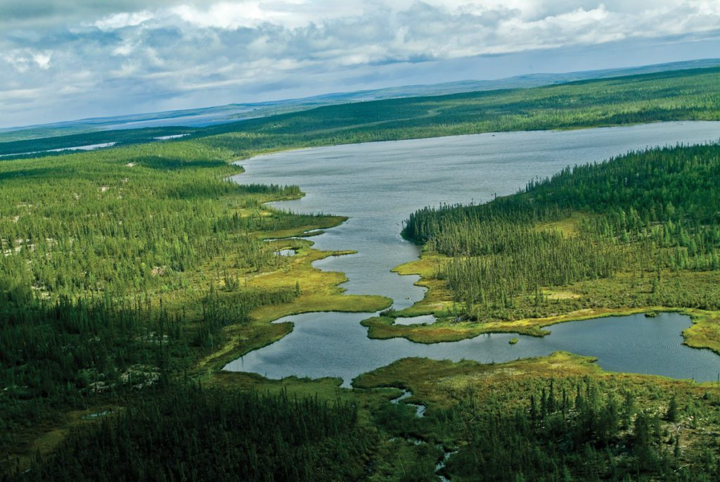 aerial view of the watershed