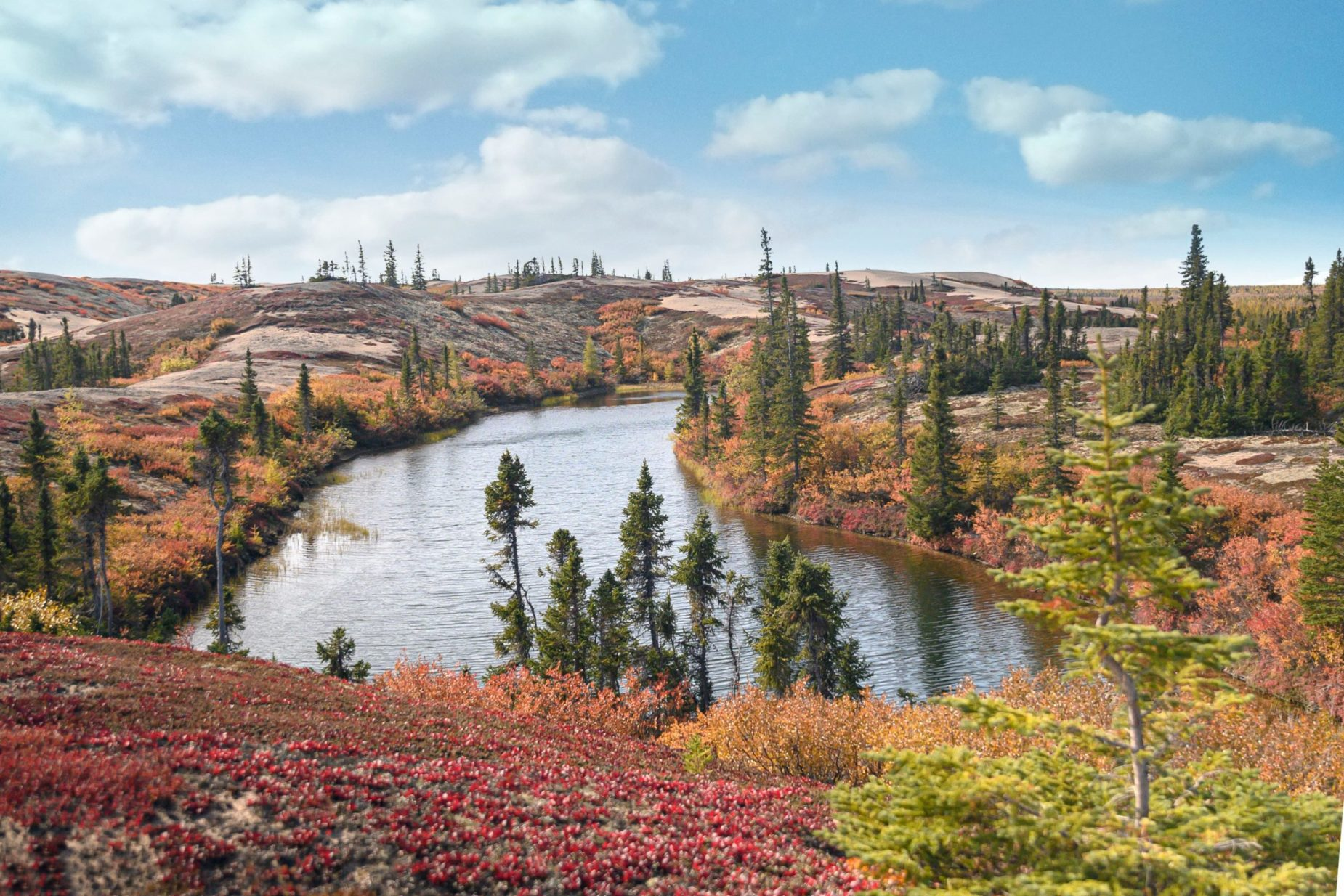 beautiful landscape image with a small pond, blue skies, and fall colors